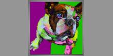 Buldog, ručne maľovaný Pop art