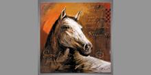 Hlava koňa, obraz ručne maľovaný