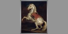 Kôň Calvados, umelecky obraz